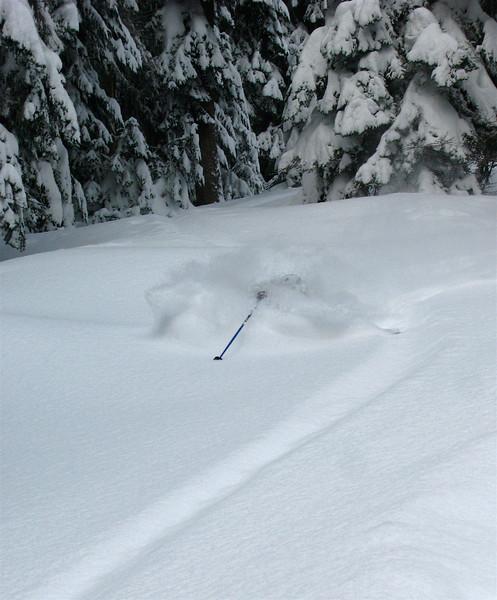 2008/09 Skiing