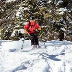 Skiing in Powder