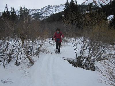 BC Skiing + Snowshoes