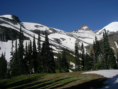 2 hours up to Summerland backcountry camp area. Here is our destination, the glacier's before Mt. Tahoma, the peak at right.