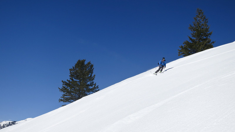 Skiing corn on the lower face of Mt Albright.