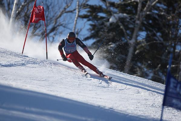 Harvard Men's Alpine