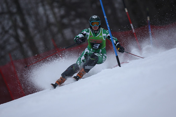 Dartmouth Women's Alpine