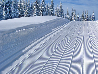 Perfect corduroy.