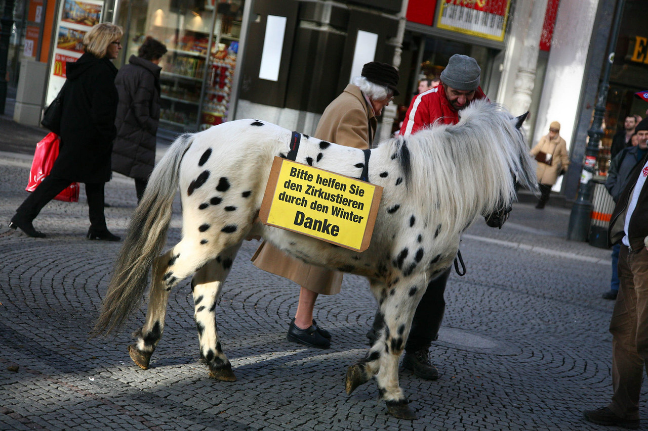 Maybe we should make a sign like that for Tivoli? ( The sign reads: please help the circus animals through the winter. Thank you)