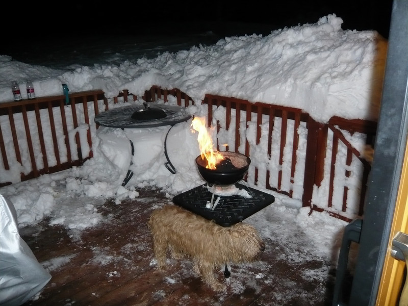 3/28/2011 - Now that the massive storm has ended, time to fire up the BBQ. We had grilled salmon and mango salsa. Ragan is staying warm by the fire.