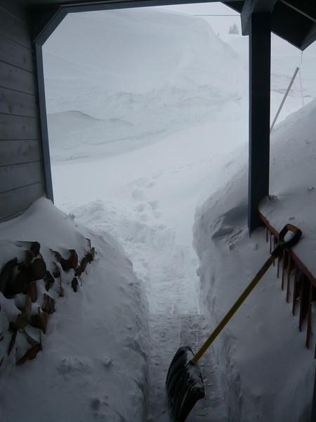 03/24/2011 - Front Walk And Deck After Shovelling