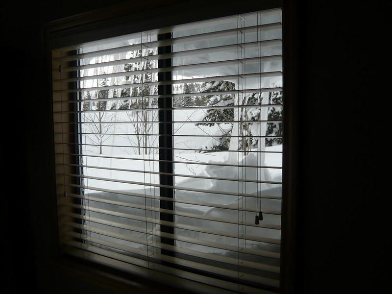 03/22/2011 - Dining Room Window