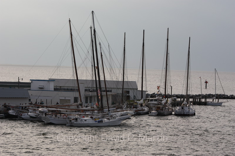 The skipjacks in the port of Deal Island, Maryland, the evening before the Labor Day race. (2009)