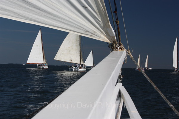Skipjacks ahead of the bowsprit of the Somerset. (2010)