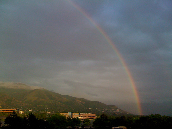Rainbow over ARUP