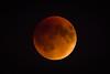 Moon-9361