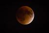 Moon-9316