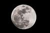 Moon-9730