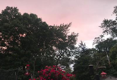 Sky June 2018