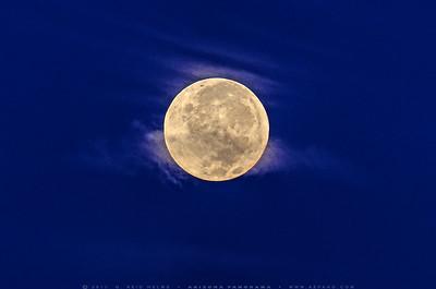 Full Moon Twilight
