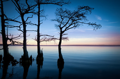 Cypress Shore - A peaceful shoreline along the James River with Cypress trees silhouetted against the late sky.