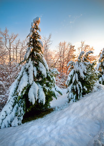 Snowbank - Sunrise on freshly fallen snow.