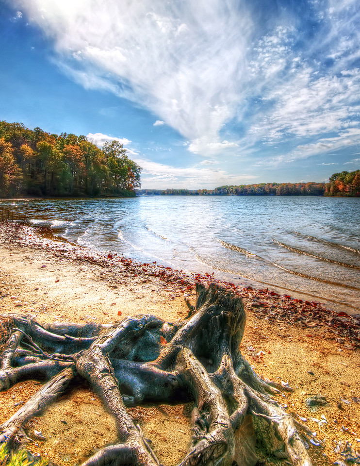 Lake Anna Autumn