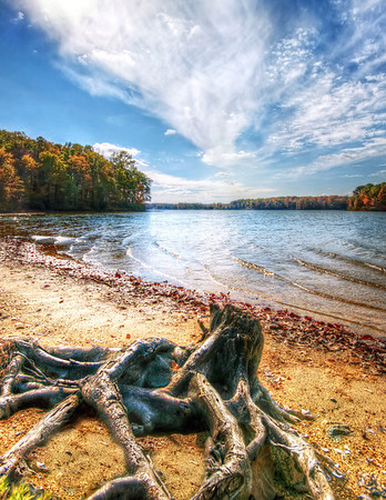 Lake Anna Autumn