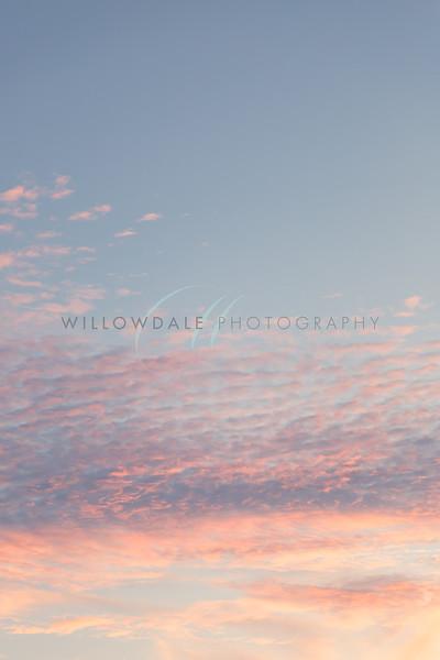 Pink Clouds I