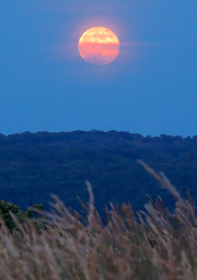 Super Moon Rising