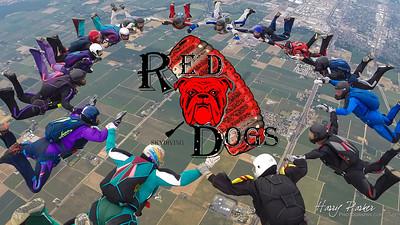 6 4 16-RedDogs