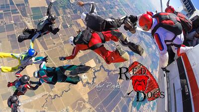 7 16 16-RedDogs