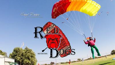 8-13-16-RedDogs