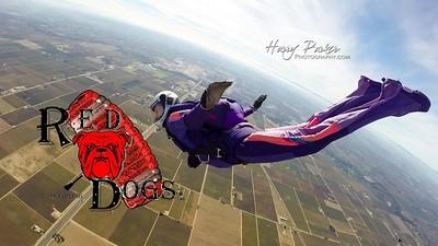 10 22 16-RedDogs