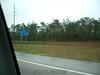Florida2005 079