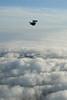 Ariel backfly.  1/23/07