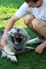 Rob cheats on his dog. 7/26/08