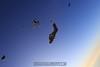 Heads down wingsuit. 8/15/09