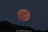 Full moon.   6/6/09