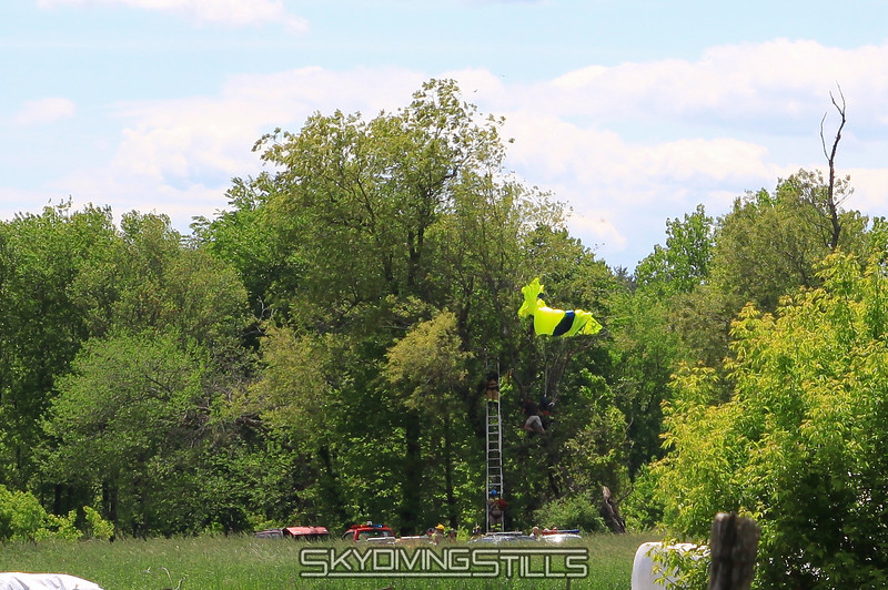 Tree rescue. 5/16/10