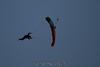 2012-12-30_skydive_eloy_0671