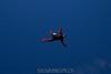 2012-12-15_skydive_cpi_0096