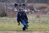 2012-12-09_skydive_cpi_0695
