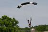 2012-06-30_skydive_cpi_0180