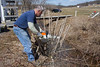 Don helps clean up the edge of the brook.