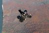 2013-11-02_skydive_cpi_0892