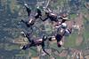 2013-09-29_skydive_cpi_0473