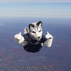 """Jonathan all alone. <br><span class=""""skyfilename"""" style=""""font-size:14px"""">2015-10-31_skydive_cpi_0082</span>"""