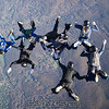"""Almost built. Surely Ben will wait for all the grips and a few pictures of the completed formation. <br><span class=""""skyfilename"""" style=""""font-size:14px"""">2017-11-04_skydive_cpi_0053</span>"""