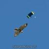 2017-04-30_skydive_cpi_0070