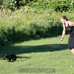 Puppy gets a taste of freedom. Sarah gets a workout. 2017-06-24_skydive_cpi_0234