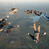 "Breakoff. <br><span class=""skyfilename"" style=""font-size:14px"">2017-06-24_skydive_cpi_0963</span>"