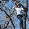 """Surveying a proper branch for a rope swing. <br><span class=""""skyfilename"""" style=""""font-size:14px"""">2018-04-21_skydive_cpi_0177</span>"""