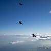 "<br><span class=""skyfilename"" style=""font-size:14px"">2019-05-17_skydive_jumptown_0120</span>"